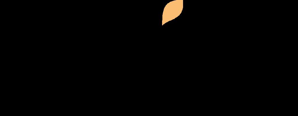 logo de wix