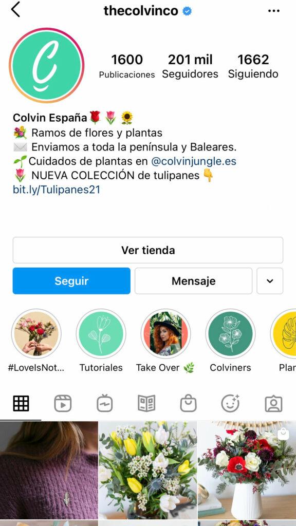 Captura de pantalla del perfil de Instagram de Colvin España.